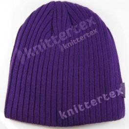 Stylish Rib Knit Purple Beanie